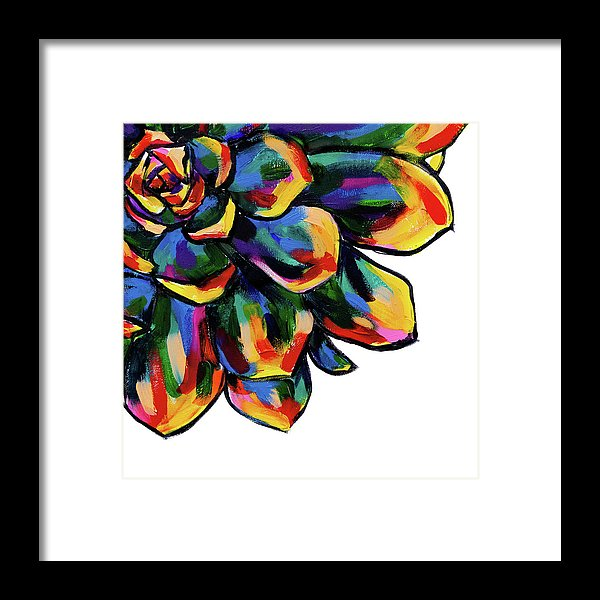 Rainbow Succulent By Jessica Contreras - Framed Print from Wallasso - The Wall Art Superstore