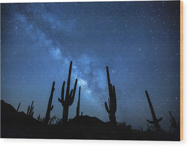 Saguaro Cactus Under Stars of The Milky Way Galaxy - Wood Print from Wallasso - The Wall Art Superstore