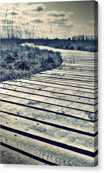 Sepia Boardwalk Planks With Grass - Canvas Print from Wallasso - The Wall Art Superstore