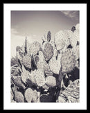 Sepia Prickly Pear Paddle Cactus, Portrait - Framed Print from Wallasso - The Wall Art Superstore