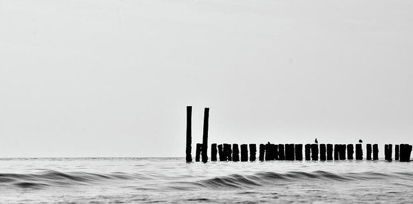 Silhouette of Wood Posts In Ocean - Art Print from Wallasso - The Wall Art Superstore