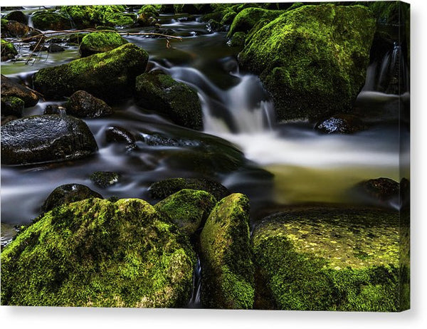 Small Creek Waterfall With Mossy Rocks - Canvas Print from Wallasso - The Wall Art Superstore