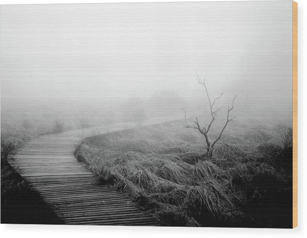 Solitary Boardwalk Disappearing Into Fog - Wood Print from Wallasso - The Wall Art Superstore