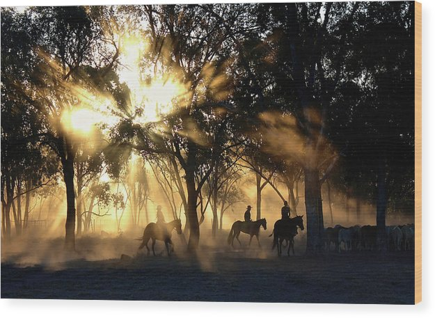 Sunlight Streaming Through Trees With Cowboys and Horses - Wood Print from Wallasso - The Wall Art Superstore