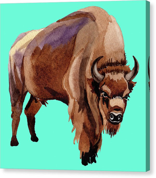 Teal Pop Art Buffalo Watercolor Painting - Canvas Print from Wallasso - The Wall Art Superstore