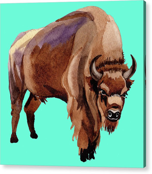 Teal Pop Art Buffalo Watercolor Painting - Acrylic Print from Wallasso - The Wall Art Superstore