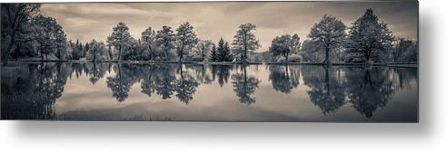 Trees Reflected In Lake Panorama - Metal Print from Wallasso - The Wall Art Superstore
