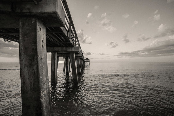 Underside of Pier - Art Print from Wallasso - The Wall Art Superstore