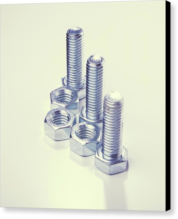 Unique Nuts and Bolts - Canvas Print from Wallasso - The Wall Art Superstore