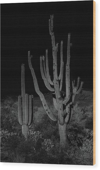 Unique Saguaro Cactus With Many Arms - Wood Print from Wallasso - The Wall Art Superstore