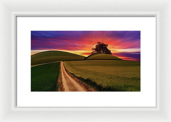 Vibrant Purple and Orange Sunset With Tree In Meadow - Framed Print from Wallasso - The Wall Art Superstore