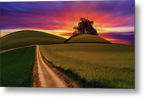 Vibrant Purple and Orange Sunset With Tree In Meadow - Metal Print from Wallasso - The Wall Art Superstore