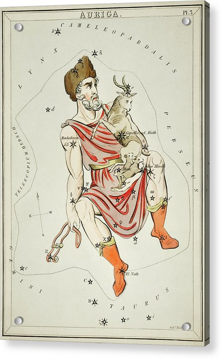 Vintage Astronomy Chart of Auriga Constellation - Acrylic Print from Wallasso - The Wall Art Superstore
