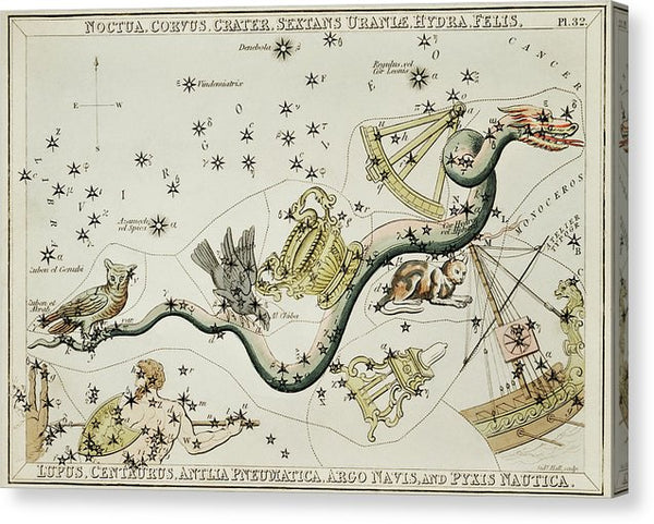 Vintage Astronomy Chart of Crater, Hydra, Lupus, Centaur, and Other Constellation - Canvas Print from Wallasso - The Wall Art Superstore
