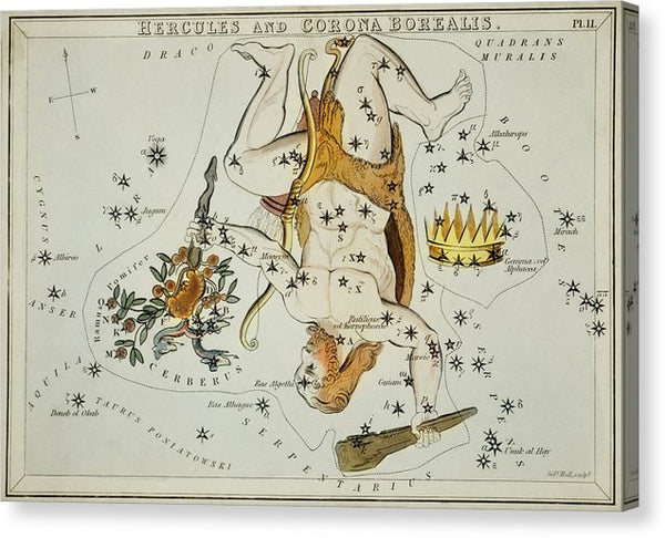 Vintage Astronomy Chart of Hercules and The Corona Borealis Constellations - Canvas Print from Wallasso - The Wall Art Superstore