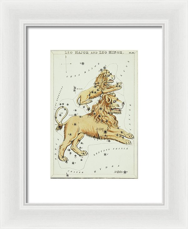 Vintage Astronomy Chart of Leo Major and Leo Minor Constellation - Framed Print from Wallasso - The Wall Art Superstore