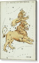 Vintage Astronomy Chart of Leo Major and Leo Minor Constellation - Acrylic Print from Wallasso - The Wall Art Superstore
