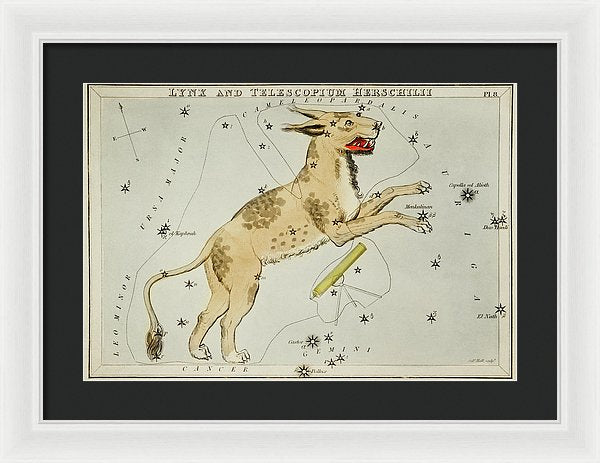 Vintage Astronomy Chart of Lynx and Telescopium Herschilii Constellation - Framed Print from Wallasso - The Wall Art Superstore