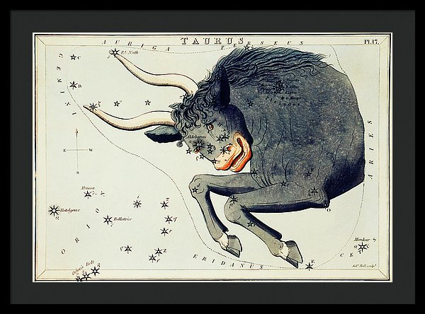 Vintage Astronomy Chart of Taurus Constellation - Framed Print from Wallasso - The Wall Art Superstore