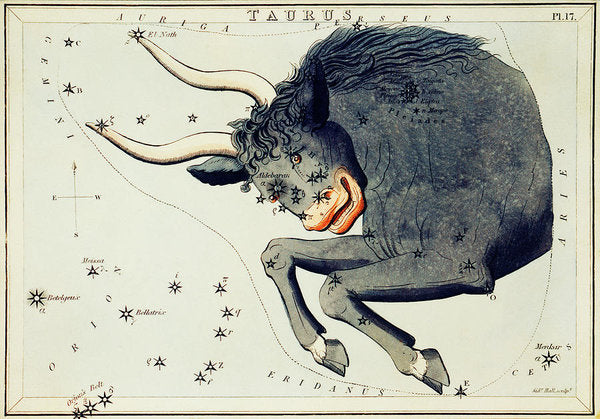Vintage Astronomy Chart of Taurus Constellation - Art Print from Wallasso - The Wall Art Superstore
