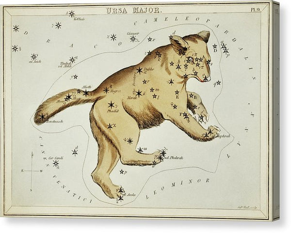 Vintage Astronomy Chart of Ursa Major Constellation - Canvas Print from Wallasso - The Wall Art Superstore