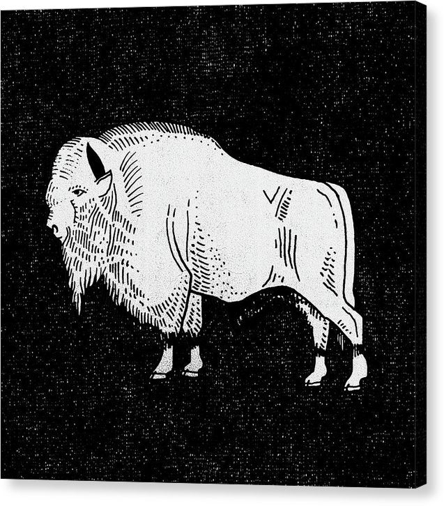 Vintage Black and White Buffalo - Canvas Print from Wallasso - The Wall Art Superstore