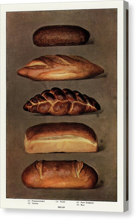 Vintage Illustration of Baked Bread From 1911, 2 of 2 Set - Canvas Print from Wallasso - The Wall Art Superstore