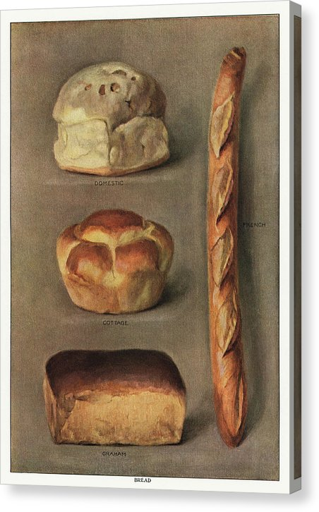 Vintage Illustration of Baked Bread From 1911, 1 of 2 Set - Canvas Print from Wallasso - The Wall Art Superstore