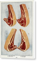 Vintage Illustration of Beef Ribs Raw Meat, 1911 - Canvas Print from Wallasso - The Wall Art Superstore