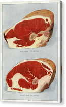 Vintage Illustration of Beef Sirloin Raw Meat From 1911, 3 of 3 Set - Canvas Print from Wallasso - The Wall Art Superstore