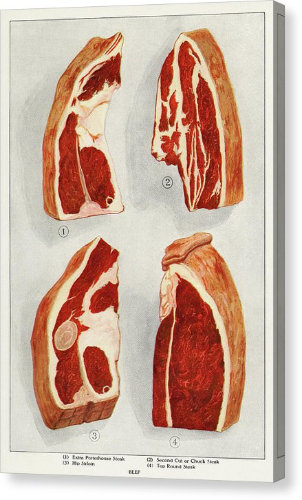 Vintage Illustration Of Beef Sirloin Raw Meat From 1911, 1 Of 3 Set - Canvas Print from Wallasso - The Wall Art Superstore