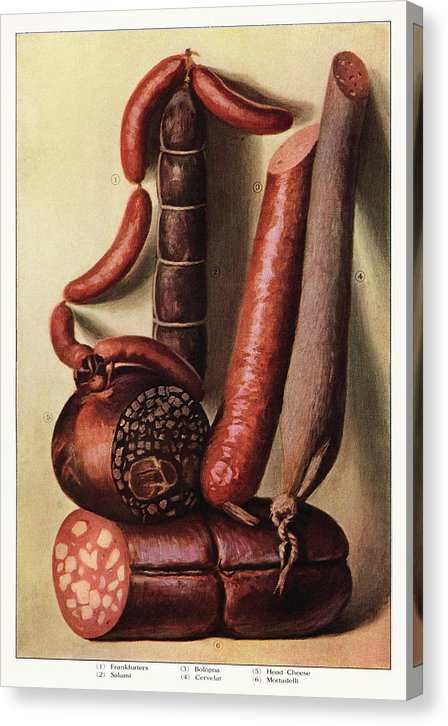 Vintage Illustration of Sausage, 1911 - Canvas Print from Wallasso - The Wall Art Superstore