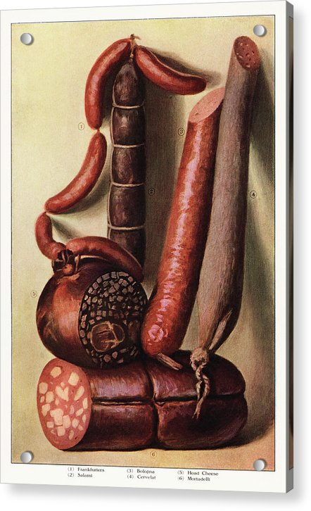 Vintage Illustration of Sausage, 1911 - Acrylic Print from Wallasso - The Wall Art Superstore