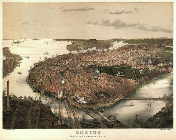 Vintage Map of Boston, Massachusetts From 1877 - Art Print from Wallasso - The Wall Art Superstore