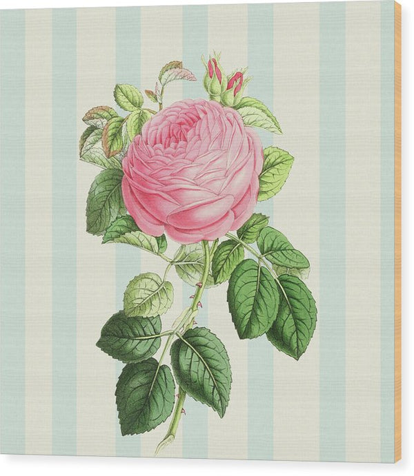 Vintage Rose Decoupage Design - Wood Print from Wallasso - The Wall Art Superstore