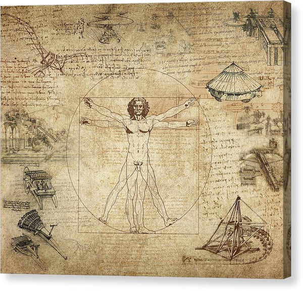 Vitruvian Man Decoupage Design - Canvas Print from Wallasso - The Wall Art Superstore