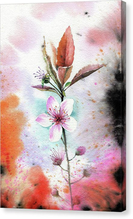 Watercolor Cherry Blossom Painting - Canvas Print from Wallasso - The Wall Art Superstore