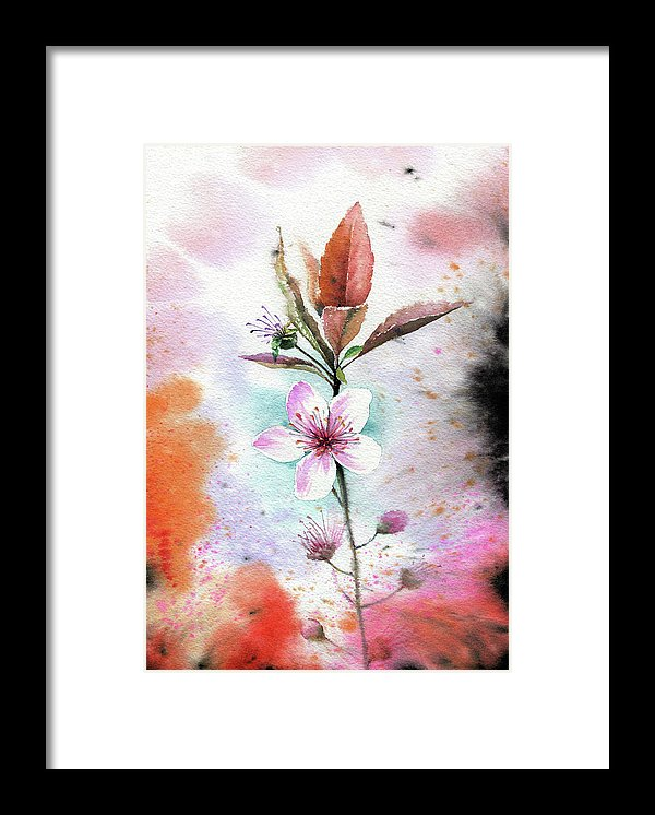 Watercolor Cherry Blossom Painting - Framed Print from Wallasso - The Wall Art Superstore