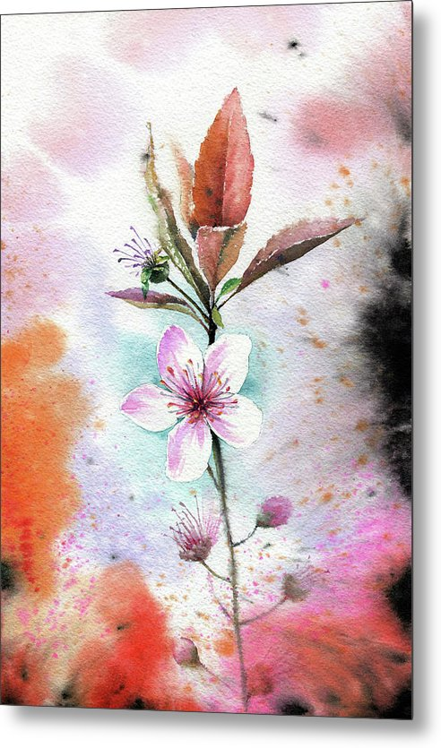 Watercolor Cherry Blossom Painting - Metal Print from Wallasso - The Wall Art Superstore