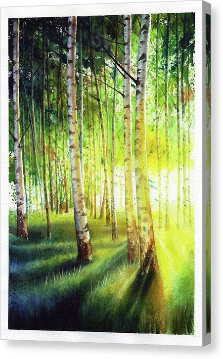 Watercolor Painting Of Birch Trees - Canvas Print from Wallasso - The Wall Art Superstore