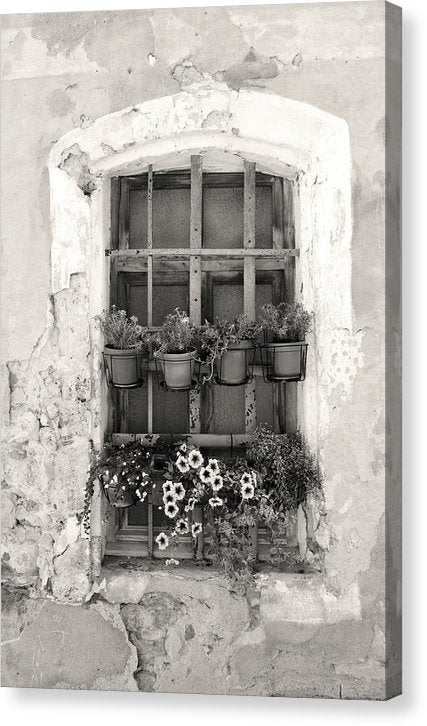 Window With Potted Flowers - Canvas Print from Wallasso - The Wall Art Superstore