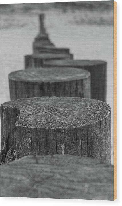 Wooden Posts On Sandy Beach - Wood Print from Wallasso - The Wall Art Superstore