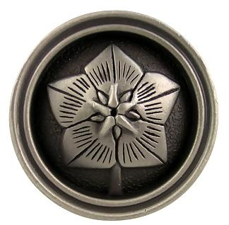 1 3/8 Inch Raised Germanium Knob (Satin Pewter Finish)