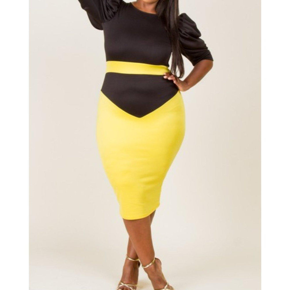 Plus Size Colour Block Fitted Dress