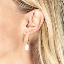 Load image into Gallery viewer, Small Gold Hoop Earrings + White Freshwater Pearl Drop