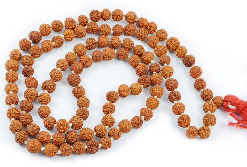 Original Rudraksha Mala 8 MM for Daily Wear or Mantra Japa