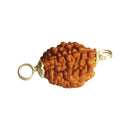 Original Certified Silver Capped Rudraksha beads online at cheapest price. Do mukhi.