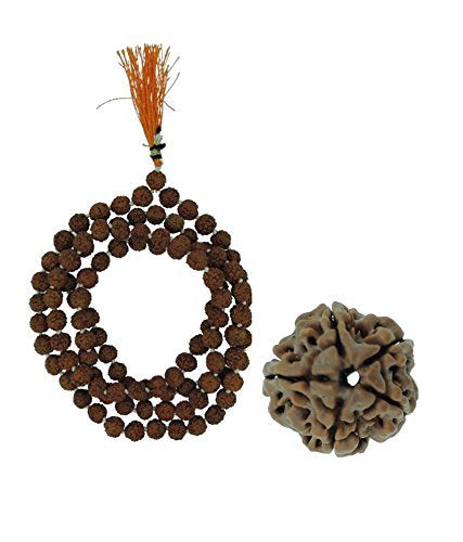Original Rudraksha Mala + 5 Mukhi Rudraksha for Daily Wear or Mantra Japa With LAB Certificate