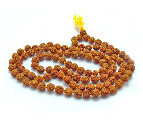Buy Original 6 Mukhi Rudraksha Mala for Daily Wear or Mantra Japa With LAB Certificate Cheap