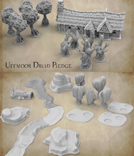 2019 STORMGUARD UNDONE: UFFMOOR DRUID LATE PLEDGE ONLY
